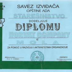 Diploma for help in the development and activities of the organizations - The Scout Association 2001